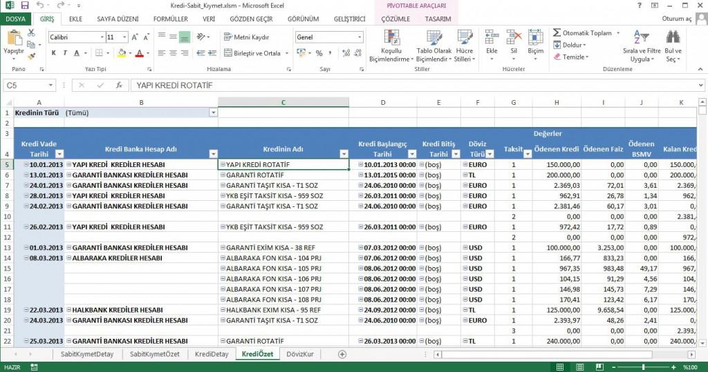 Kredi Sabit Kıymet Raporu Projesi